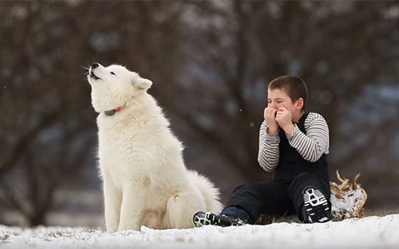 ハーモニカを演奏する少年と、そこに駆け寄ってきた犬との奇跡のセッションに感動!!