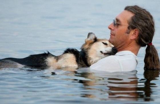 『動物を飼うということ、それは...』ある男性と老犬の話に超感動!!