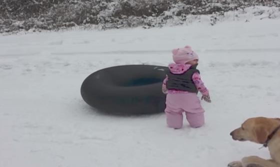 【爆笑動画】少女のソリ遊びを撮影中、突然、予想もできない滑り方で横切ったものとは・・・