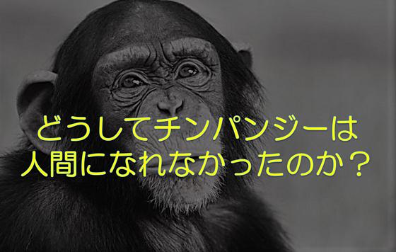 夏休み子ども科学電話相談に寄せられた「どうしてチンパンジーには人間にならなかったのか」に対する先生の答えが逸材すぎる!!