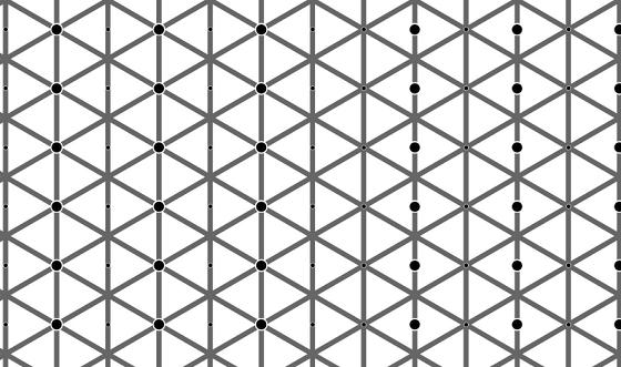 左側も右側も黒い点は同じ数なのに認識できない画像が不思議すぎる!!
