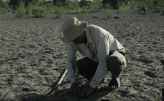砂漠に37年間毎日通い、一人で植林活動を続けた男性の物語に超感動!!