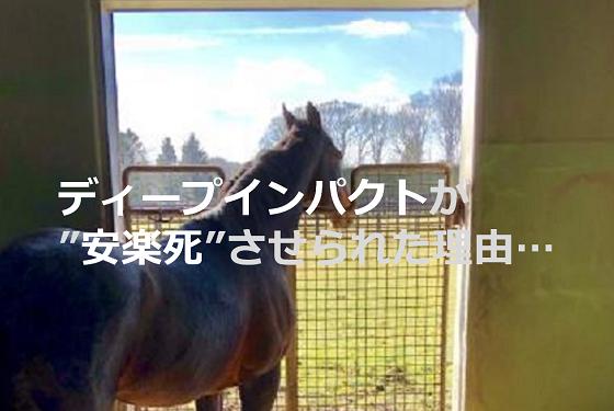 """なぜ、競走馬""""ディープインパクト""""は骨折しただけで""""安楽死""""させられたのか..."""