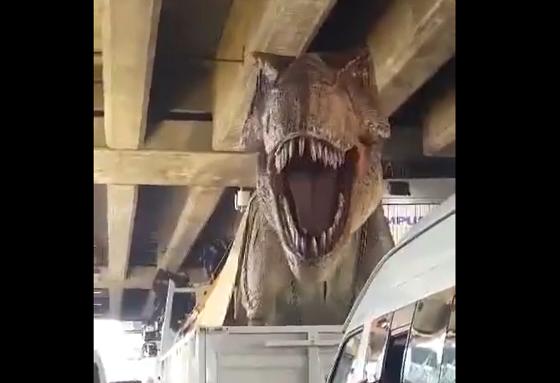 一般道路を輸送中の恐竜に遭遇?!これはさすがにビビる!!!