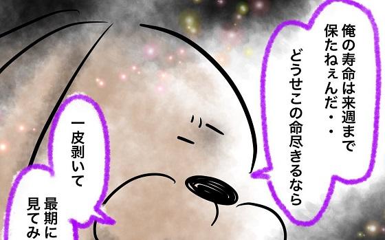 """季節外れのセミを描いた漫画""""早すぎる蝉""""に涙がこぼれる..."""