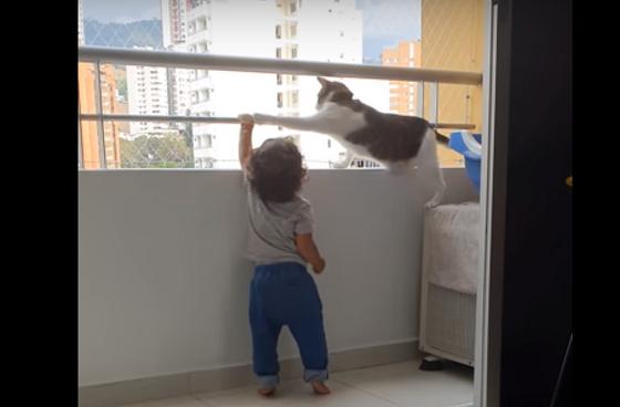 バルコニーの手すりに掴まろうとする赤ちゃんを全力で制止する猫の行動が可愛すぎるw