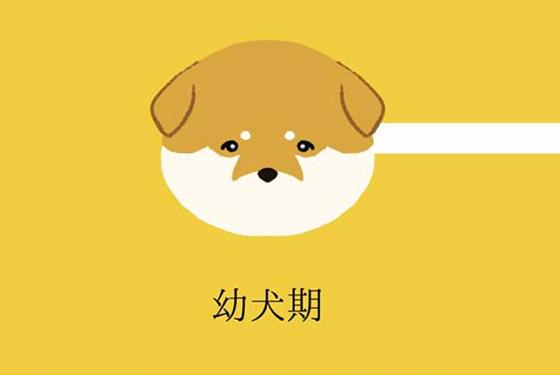 """""""犬の成長過程でそれぞれの好きなところ""""に超共感!!"""