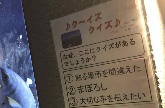 【水族館の目立たない貼り紙】なぜ、ここにクイズがあるでしょうか?