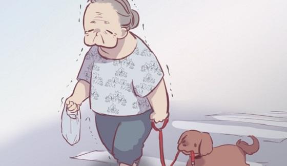 【この間 すごい犬いた】高齢女性と犬の散歩中の不思議な関係?!